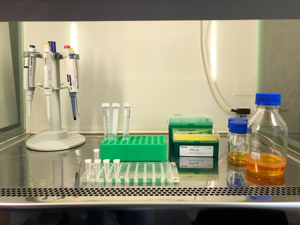 Москва ввела режим повышенной готовности для профилактики коронавируса